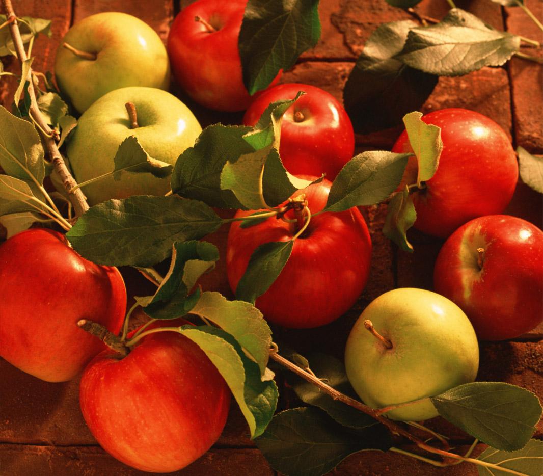 Karışık Elma